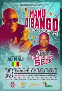 Concert exceptionnel de Manu di Bango