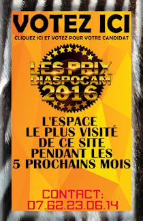 Prix Diaspocam 2016